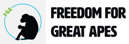 Freedom For Great Apes