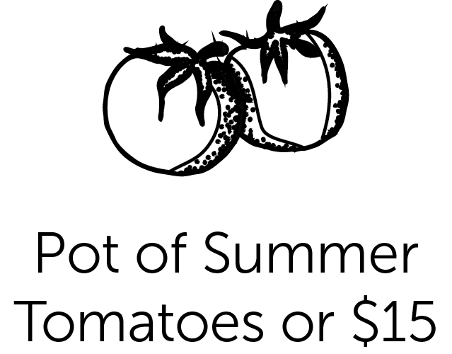 Pot of Summer Tomatoes or $15